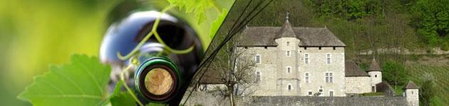 Montage château et vin