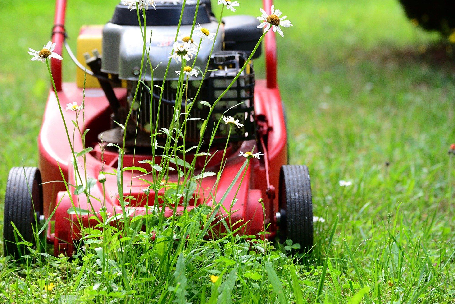 lawn-mower-5329533_1920.jpg