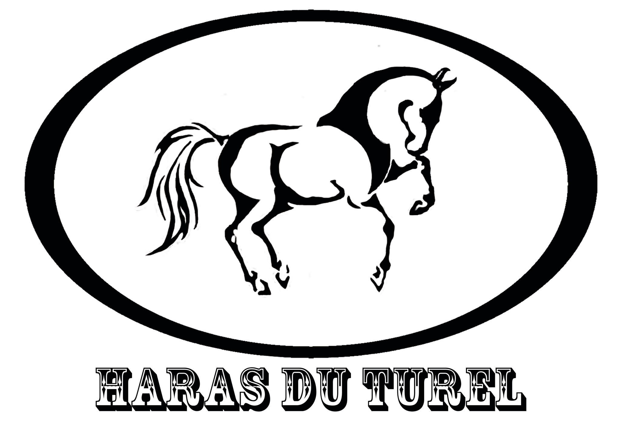 Haras du Turel.jpg