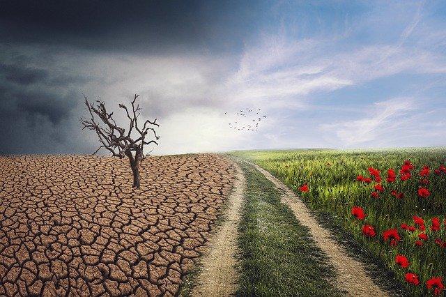 Changement climatique paysage.jpg
