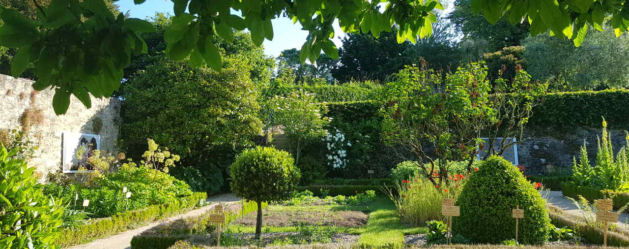 jardin remarquable 2.jpg