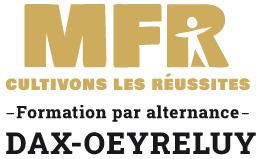MFR DAX.jpg