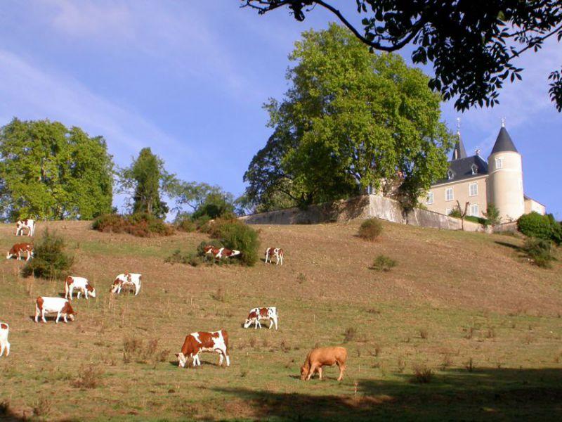 Chateau de Pointieres_01