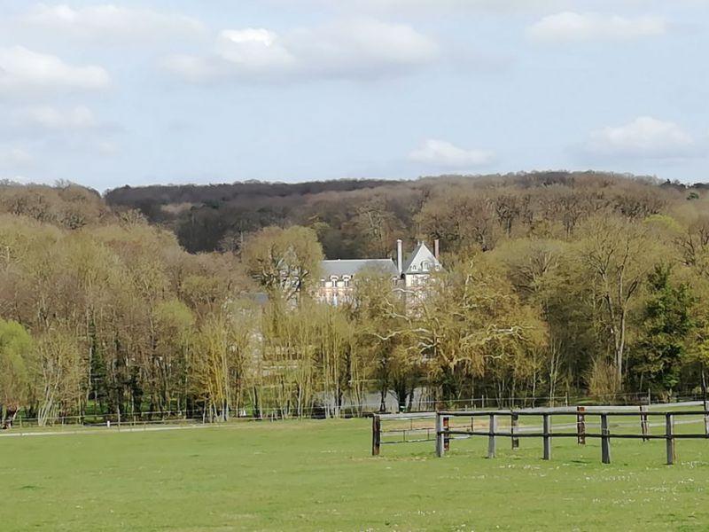 chateau hidden by trees.jpg