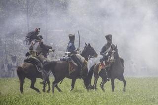 military-belgium-horses-war-theater-cannon-1084168-pxhere.com.jpg
