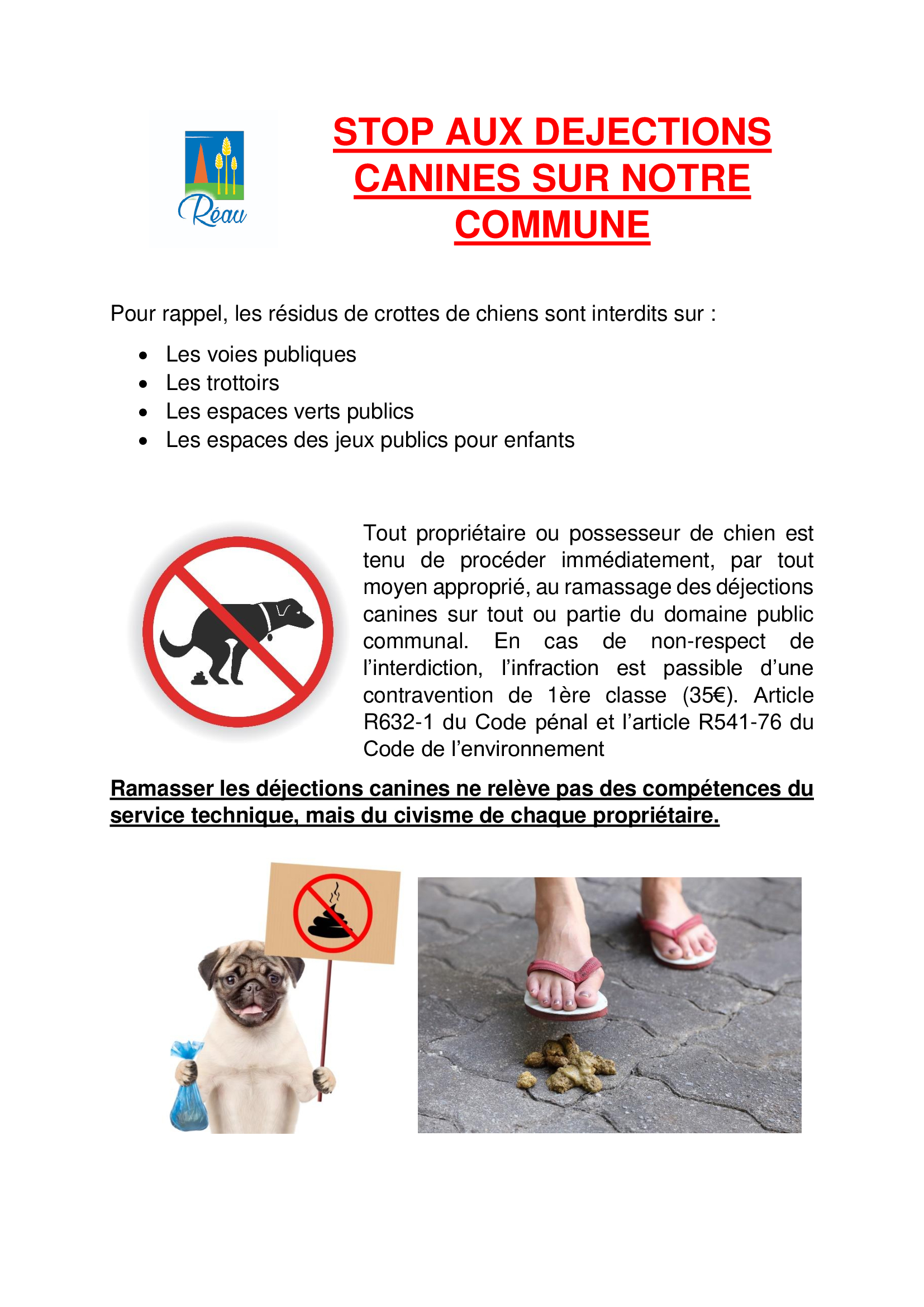 Déjections-Canines jpg.jpg