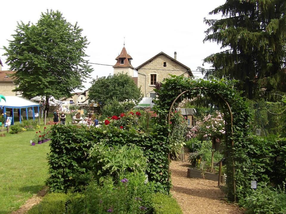 jardin des simples 1.jpg