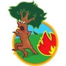 incendie de forêt.jpg