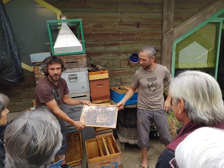 visite de la ferme apicole les ruchers au Trenta JDP 2019