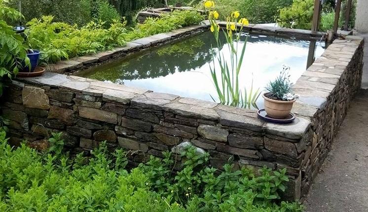 bassin.jpg