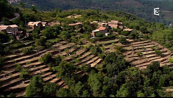 terrasse de mercoire 2012 france 3 des racines et des ailes.jpg