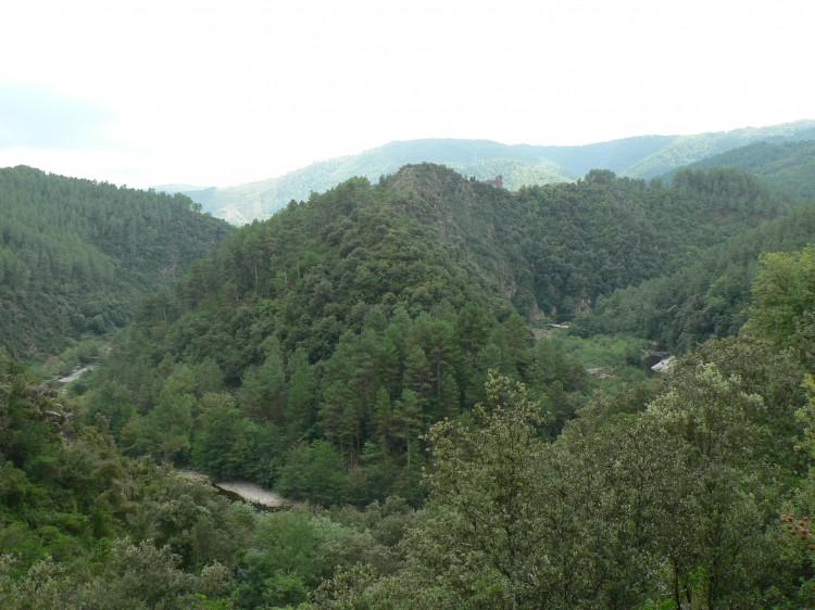colline du mirandon.jpg