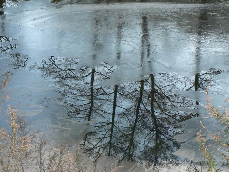 hiver en cévénnes.jpg