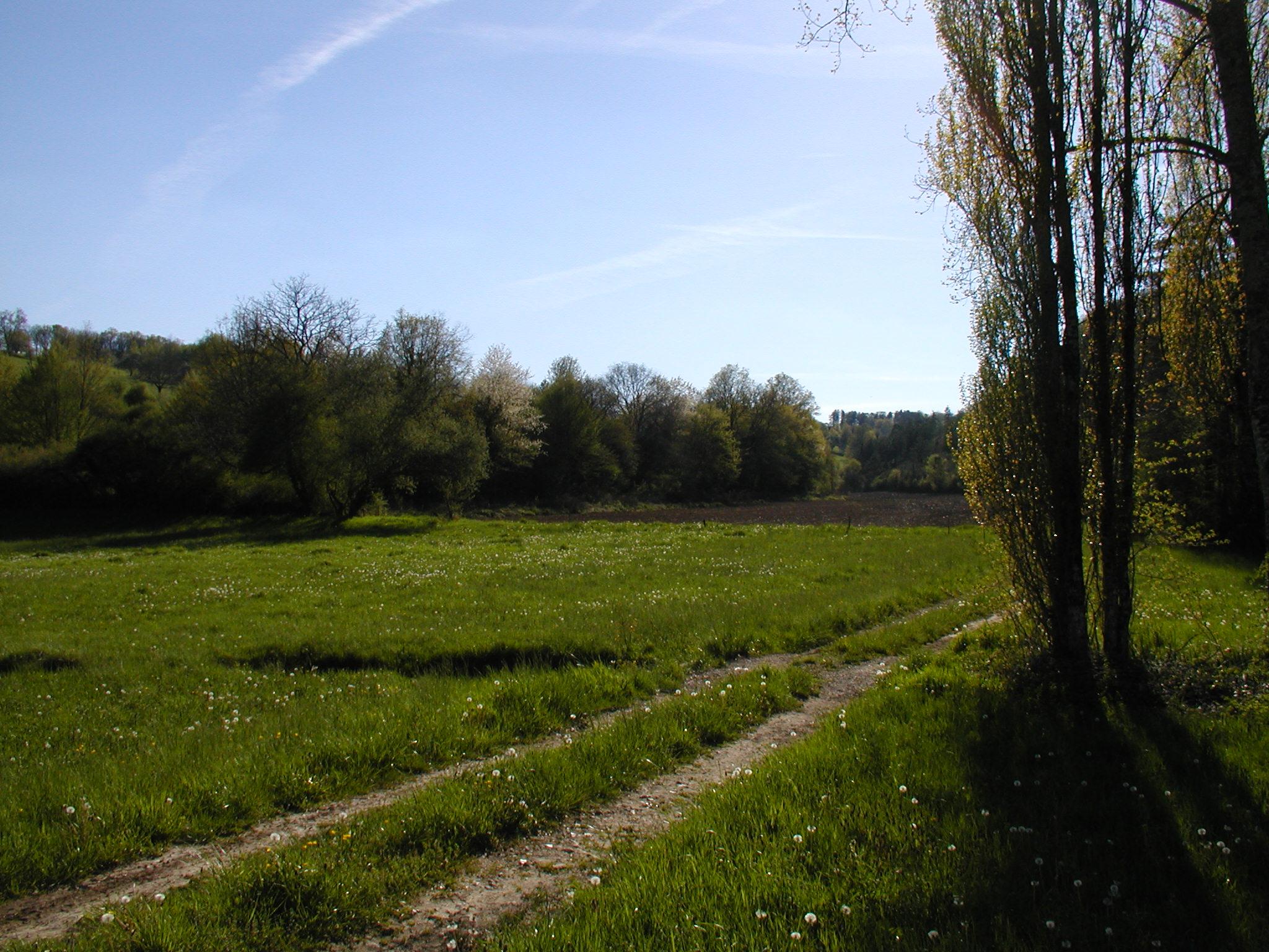 Chemin Bars.jpg
