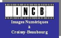Logo INCB.jpg
