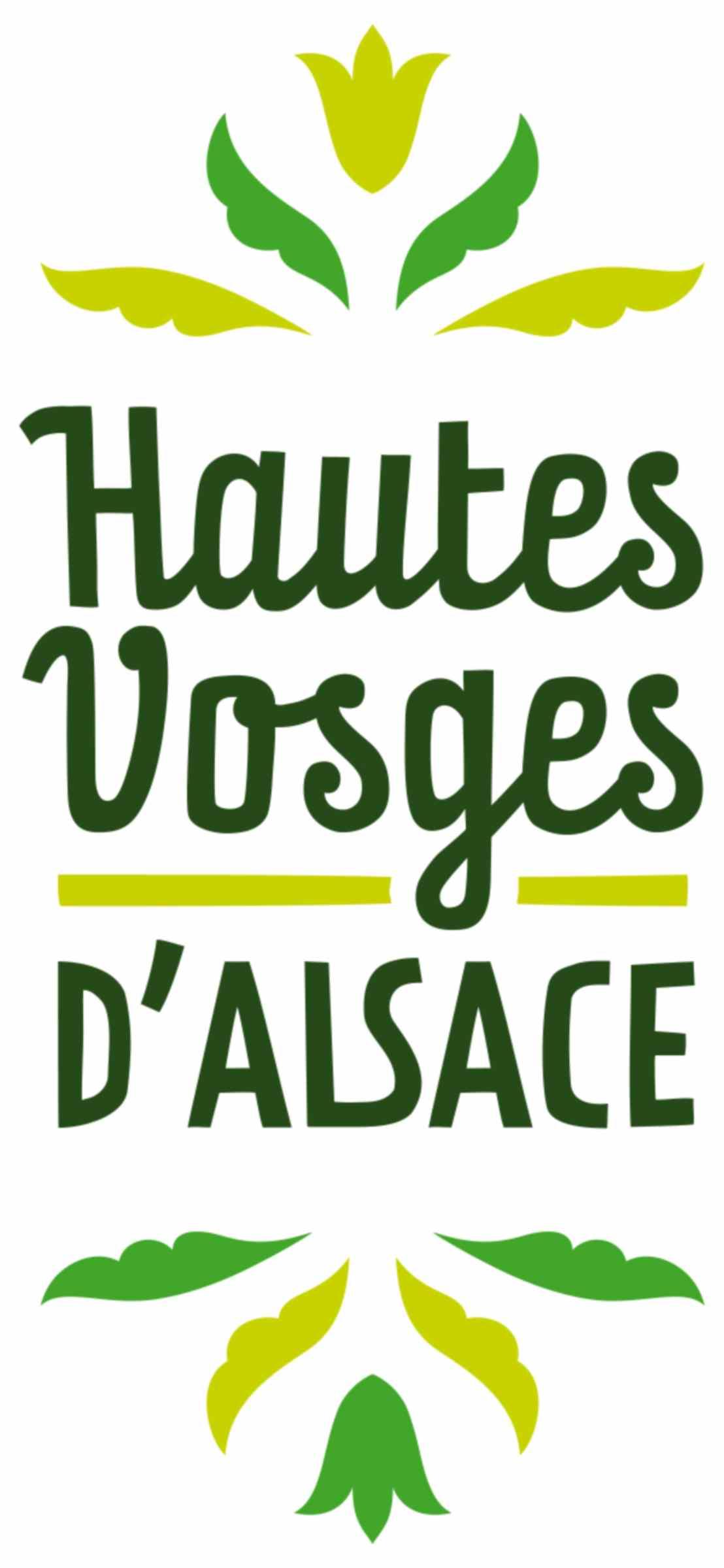 Logo HVA haute définition.jpg
