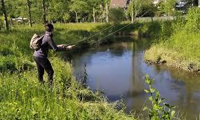 pêche 4.jpg