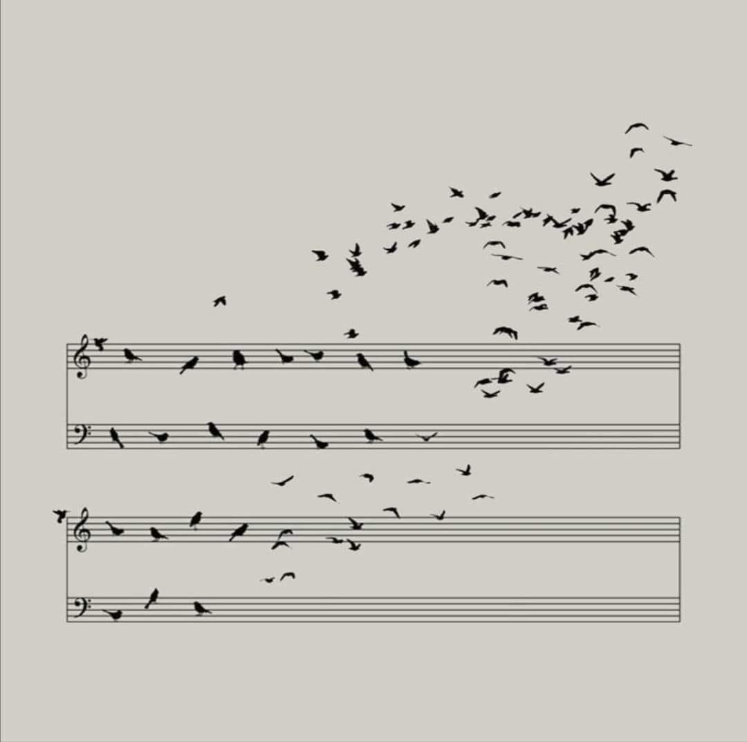 notes oiseaux.jpg