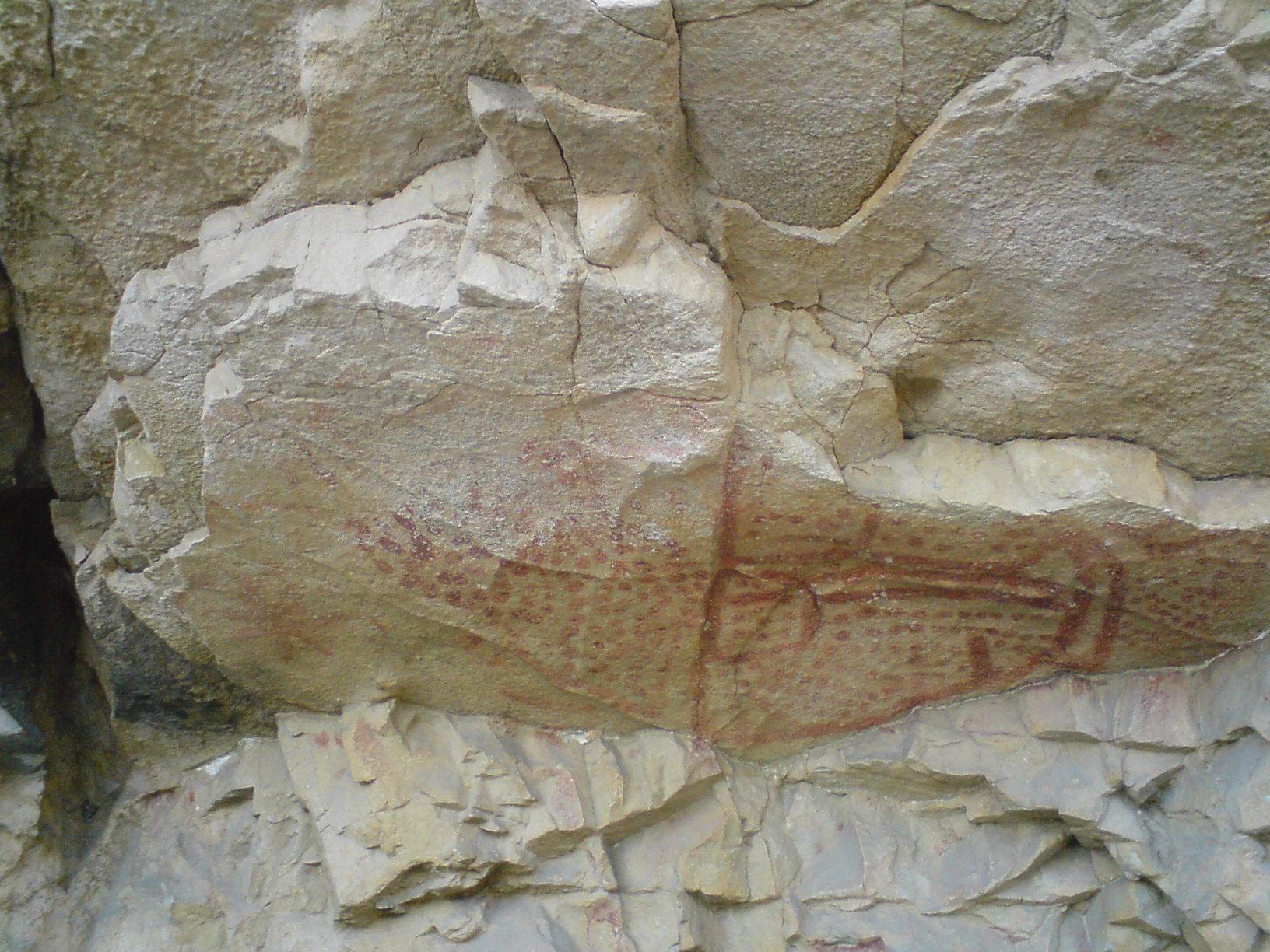 peintures rupestres.JPG