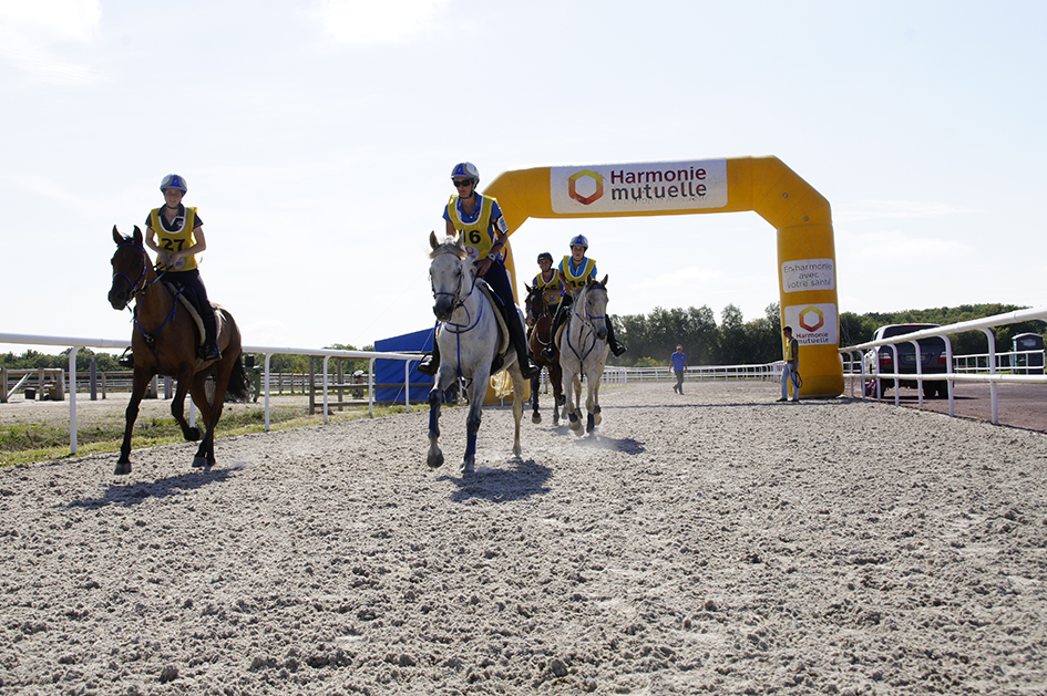 Landi endurance equestre.jpg