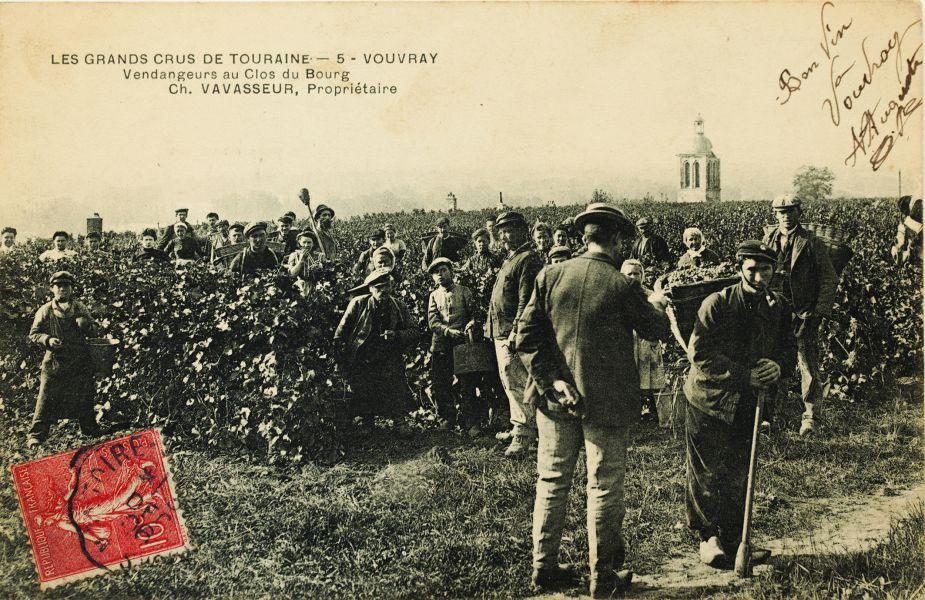 6 -Histoire de la vigne _9_.jpg