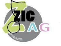 Zic Zag.jpg