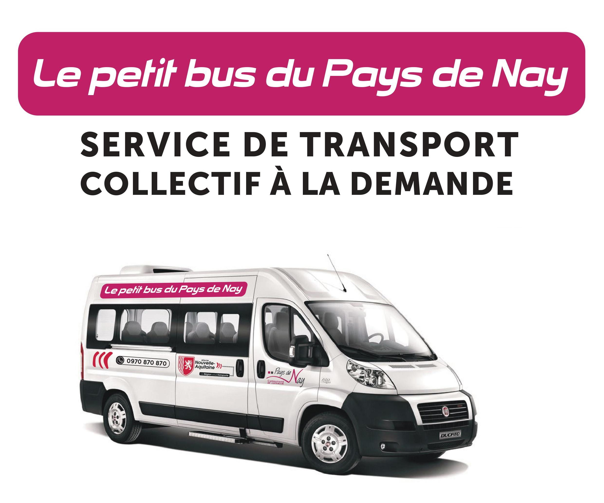 petit bus.jpg