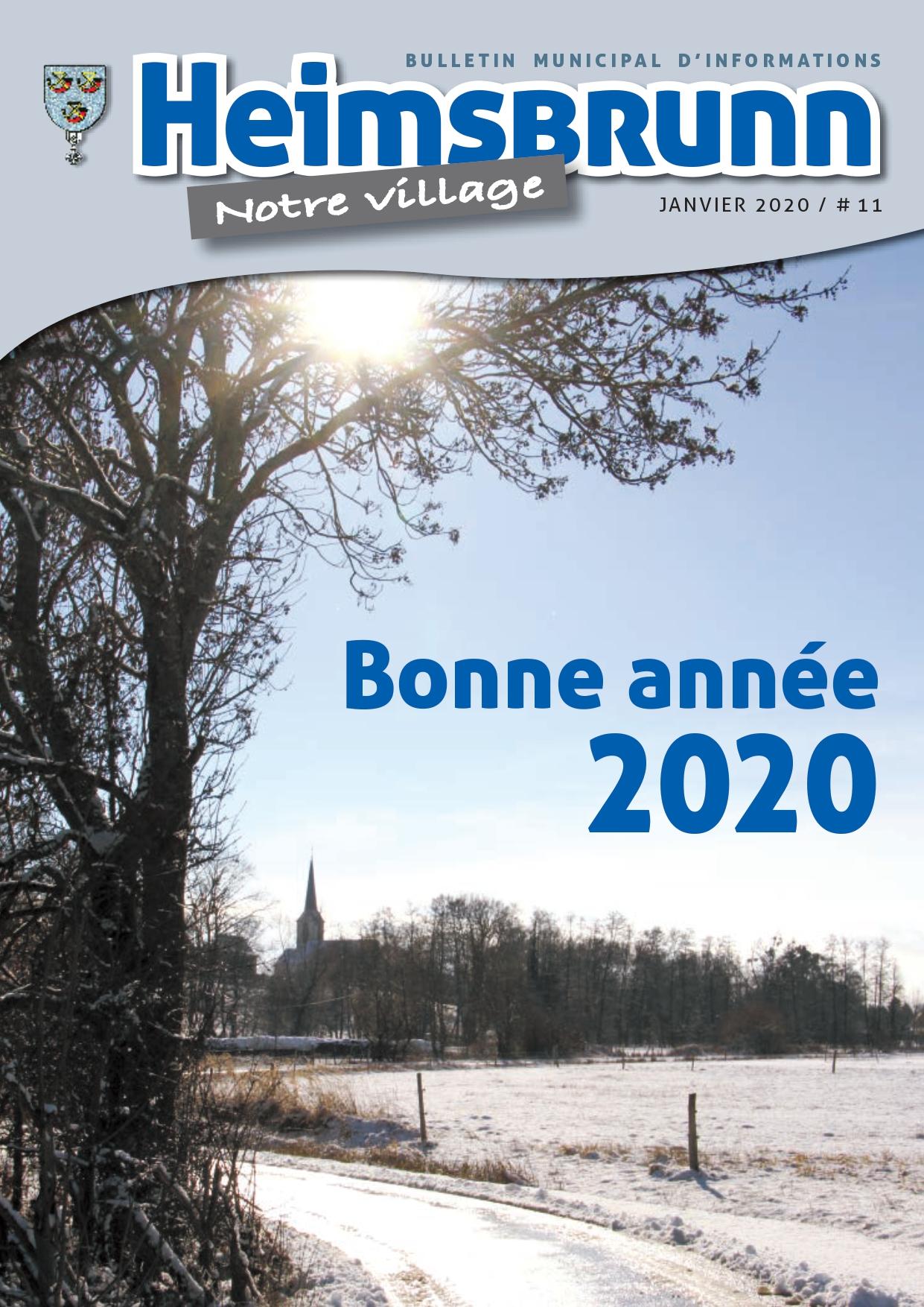 bulletin_n11_2020_page-0001.jpg