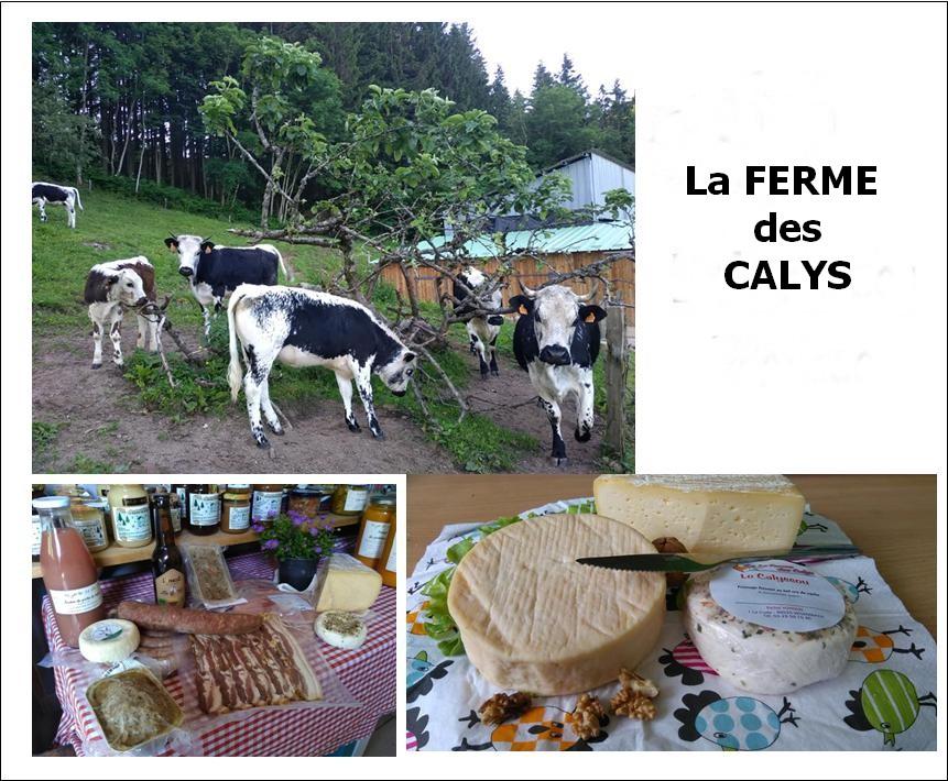 fermeCalys.jpg