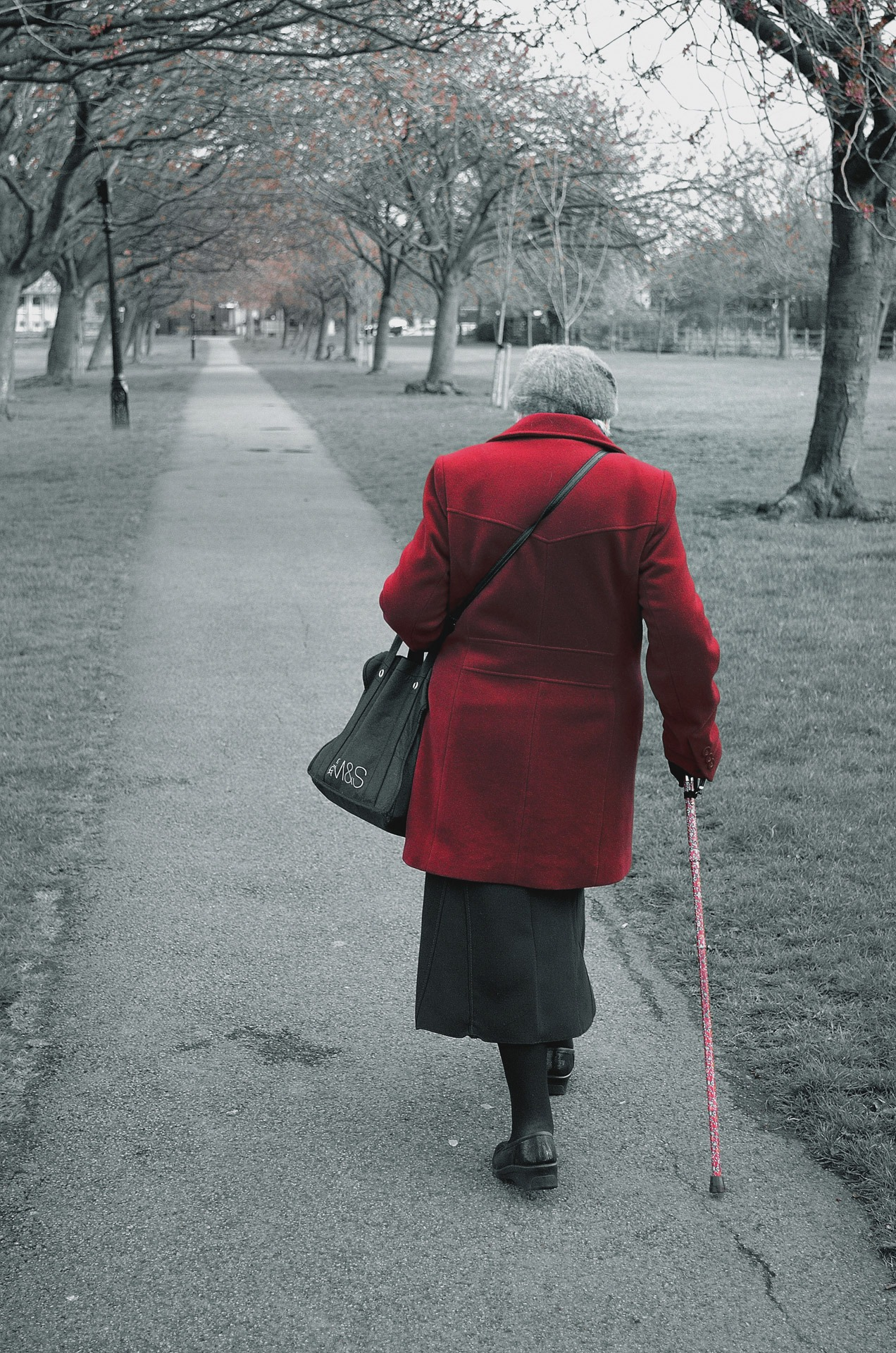 walking-69708.jpg