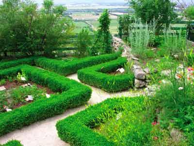 LGA - Jardin parterre carré 2.jpg