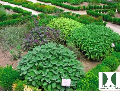 LGA - Jardin plante avec LOGO.jpg