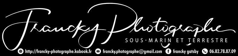 LGA - Francky Photographe logo.jpeg