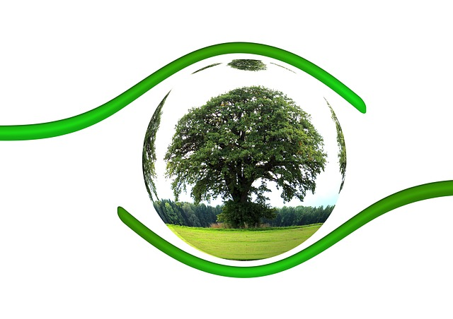 LGA - Eco responsabilite - arbre bulle.jpg
