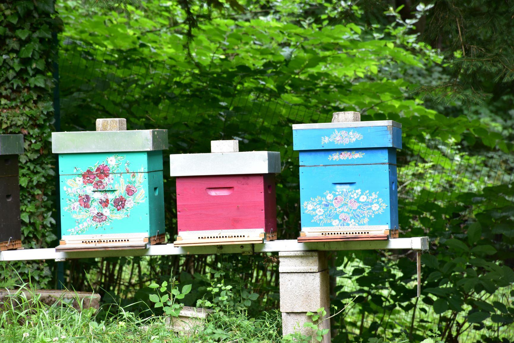 ruches décorées.jpg