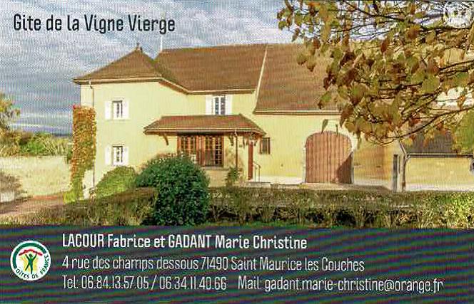 Logo Vigne Vierge.png