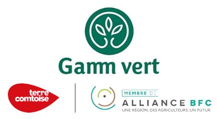 logo GAMM VERT.png