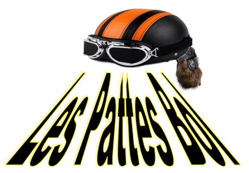 Logo pattes bol.png