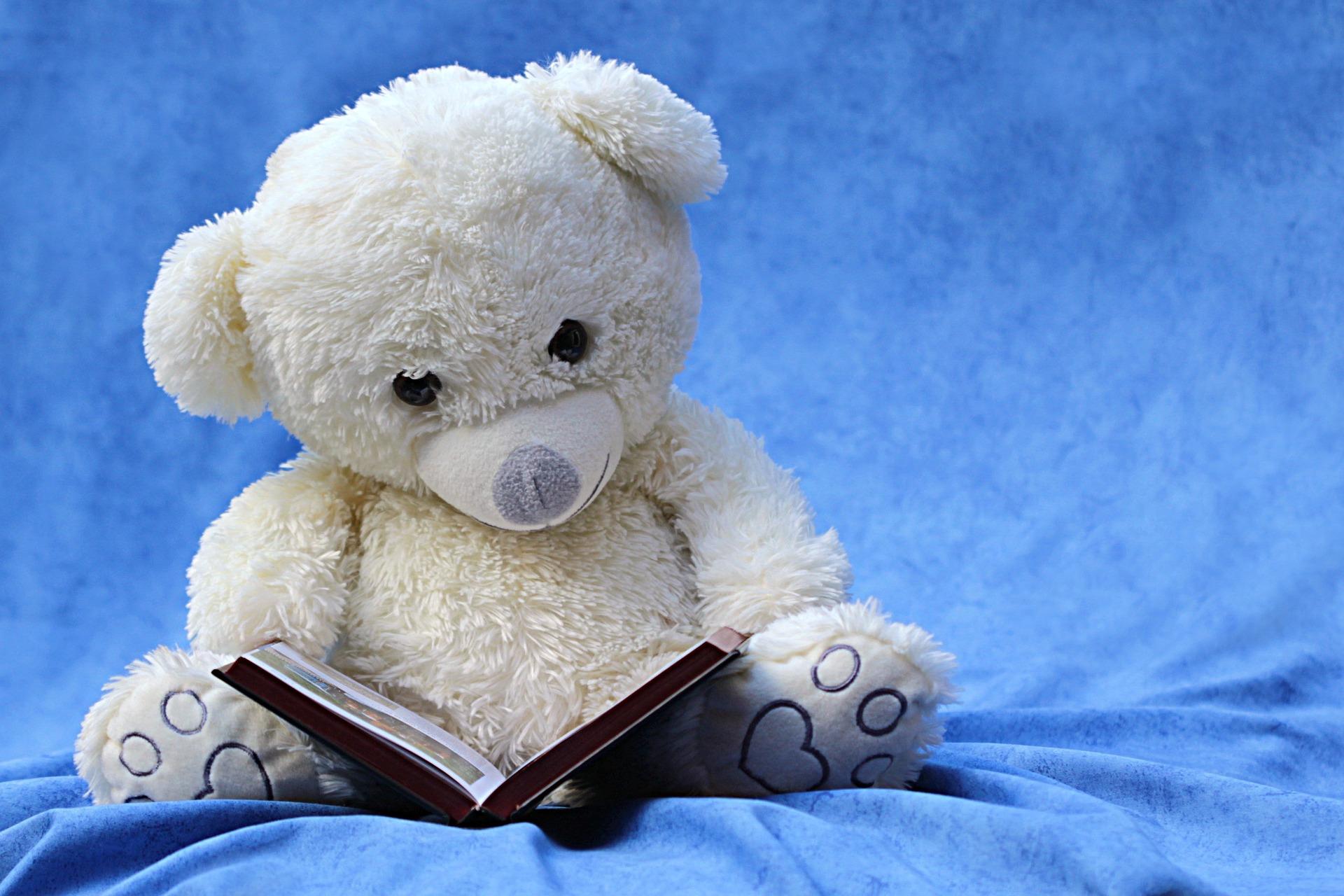livre ourson enfant.jpg