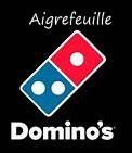 Logo Domino_s.jpg