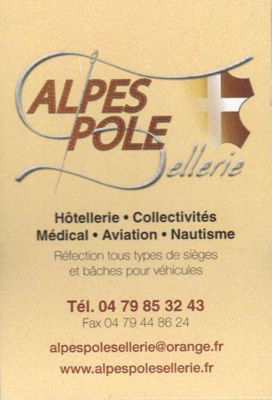 Alpes pole sellerie 2.JPG