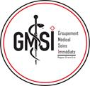 GMSI Logo.png