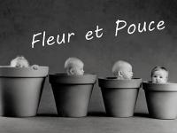 Fleur' Et Pouce