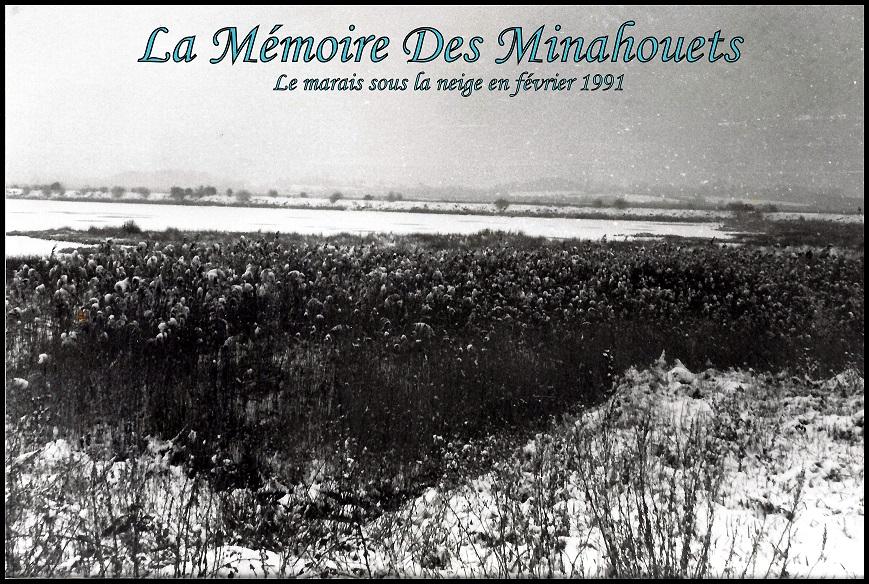 1991 - Le marais sous la neige.1.jpg