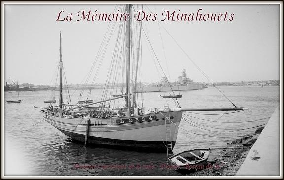 Roseau du lac à Pen-Mané.jpg