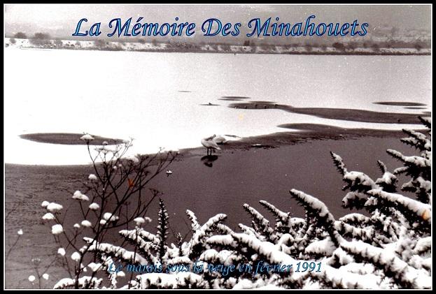 Locmiquélic sous la neige - Le marais 2.1.1.jpg
