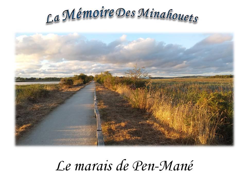 Le marais de Pen-Mané-Photo de couverture.jpg