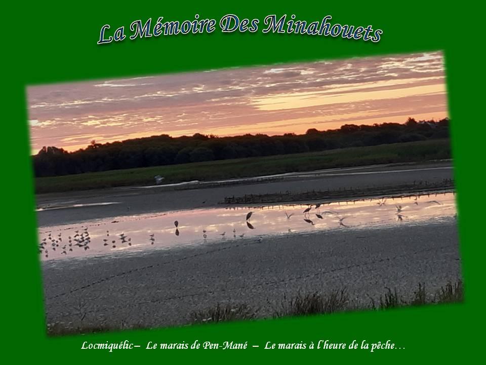 13-Le marais à l_heure de la pêche.jpg
