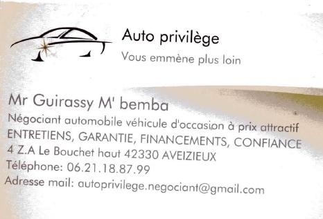 logo auto privilège.PNG