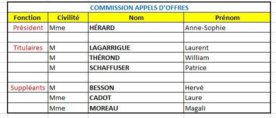 Commissions 3.JPG